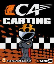 CA Carting