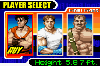 final fight download