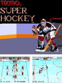 Tecmo super hockey
