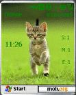 Download mobile theme Little catz