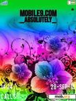 Download mobile theme Colorful Flowers