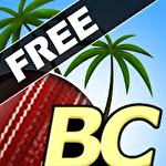 Иконка Beach Cricket