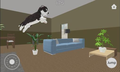 Dog simulator auf Deutsch