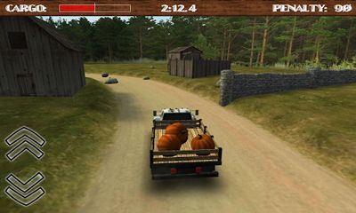 Dirt Road Trucker 3D скриншот 2