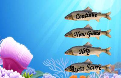 拱廊:下载钓鱼冠军到您的手机