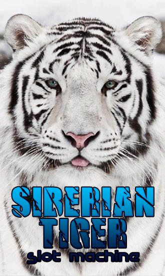 Siberian tiger: Slot machine Screenshot
