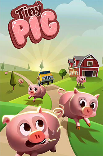 Tiny pig Screenshot