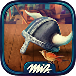 Hidden objects vikings: Picture puzzle viking game Symbol