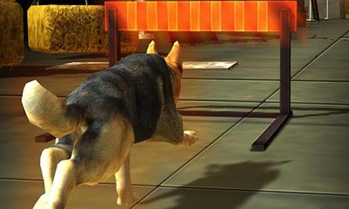 Dog simulator 3D für Android