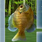 Fishing 3Dіконка