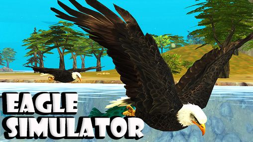 Eagle simulator screenshot 1