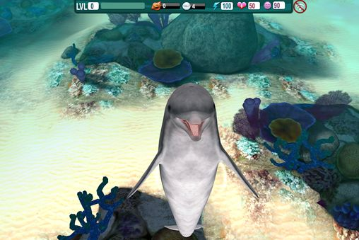 Screenshot Delphin Paradies: Wilde Freunde auf dem iPhone