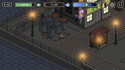 Arcade-Spiele: Lade Geschichte einer Straßenkatze auf dein Handy herunter