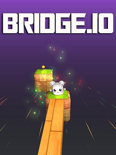 Bridge.io captura de pantalla 1