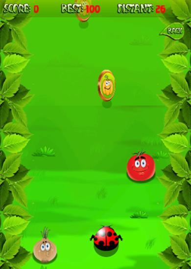 Arcade-Spiele Ladybird run für das Smartphone