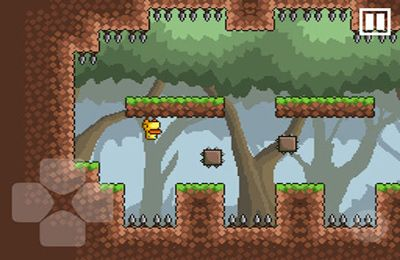 Gravity Duck for iPhone for free