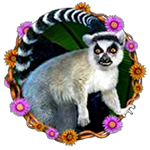 Happy jungle: Slot Symbol