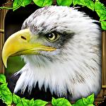 Eagle simulator icon