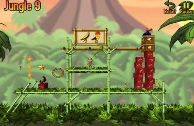 拱廊:下载猴子邦戈到您的手机