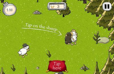 El señor de las ovejas