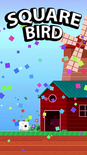 Square bird screenshot 1