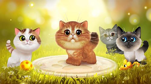 Happy kitties Screenshot