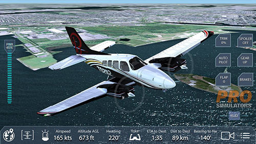 Pro flight simulator NY Screenshot