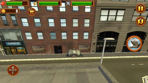 City bird: Pigeon simulator 3D für Android