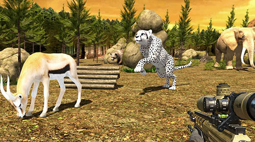 Safari hunt 3D для Android