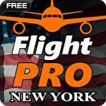 Иконка Pro flight simulator NY