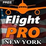 Pro flight simulator NY Symbol
