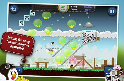 Shooter games: download Chicken Balls: Area на iPhone