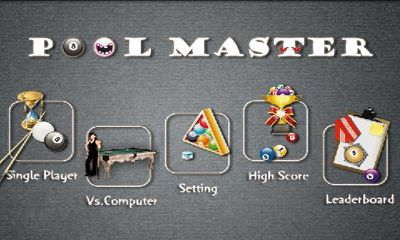 Pool Master screenshot 1