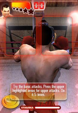 Скриншот Железный Кулак на Айфон