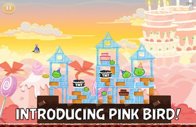 Shooter games Angry Birds HD: Birdday Party