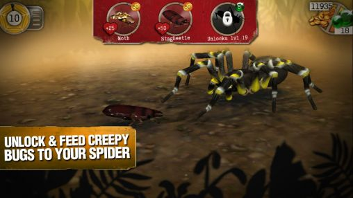 Real scary spiders für Android