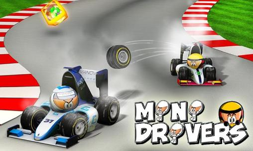 Minidrivers Screenshot