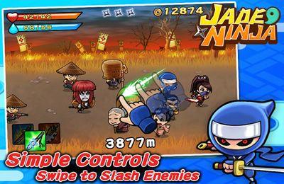 Le Ninja de Néphrite