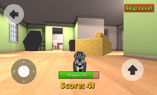 Simulation Cat simulator für das Smartphone