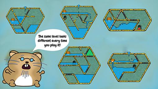 Hasty hamster and the sunken pyramid: A water puzzle Screenshot