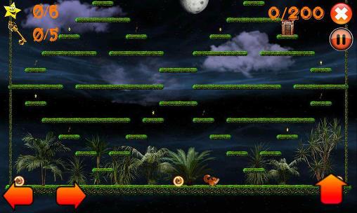 Logikspiele Jump! Jumpy fox auf Deutsch