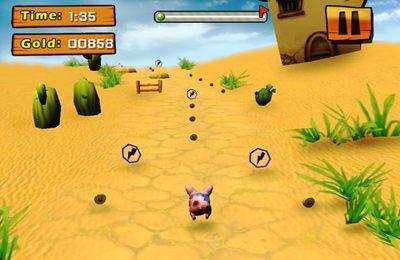 La Vengeance des Cochons pour iPhone gratuitement