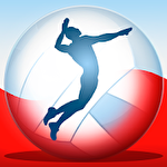 Volleyball championship 2014 Symbol