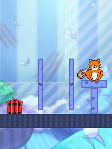 Hello cats Screenshot