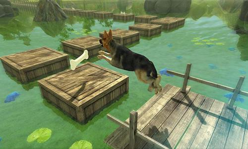 Dog simulator 3D auf Deutsch