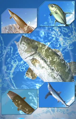 Fishing season: River to ocean captura de tela 1