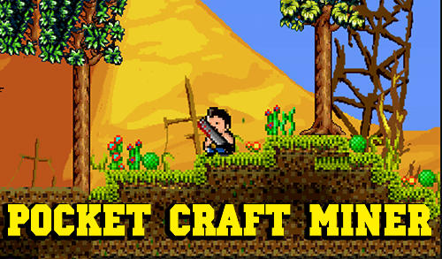 Pocket craft miner Screenshot