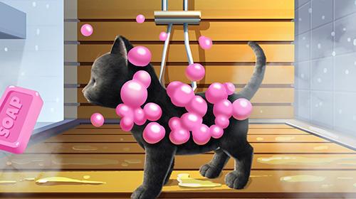Daily kitten: Virtual cat pet captura de tela 1
