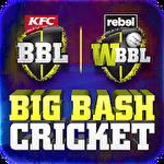 Big bash cricket icône
