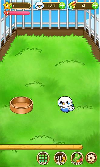 Bird life Screenshot